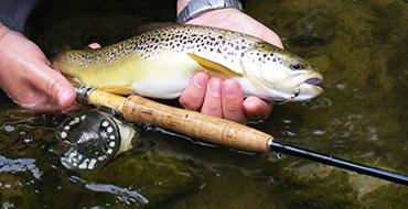 FLY-FISHING.com.ua - Товары для удачной рыбалки