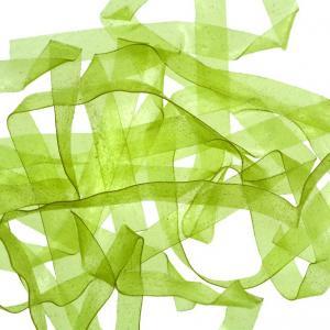 Пленка SYBAI Body Stretch - Light Green [Светло-зеленый]