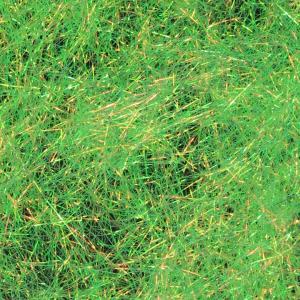 Даббинг SYBAI Fine Flash Dubbing - Gold Olive [Золотой оливковый]