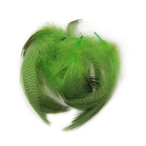 Перья селезня STRIKE Mallard Duck - Chartreuse [Салатовый]