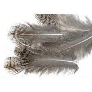 Перья куропатки STRIKE Patridge Feathers - Brown [Коричневый]