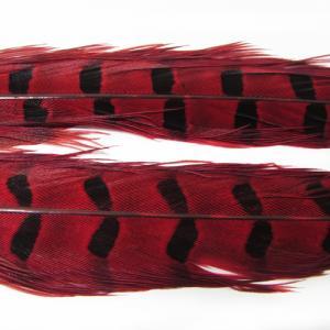 Перья фазана хвостовые WAPSI 1 Ringneck Pheasant Tail Pair - Red [Красный]