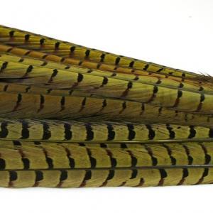 Перо фазана хвостовое HENDS Pheasant Tail - Dark Olive [Темно-оливковый]