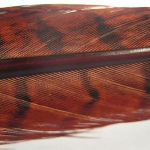 Перо фазана хвостовое HENDS Pheasant Tail - Rusty [Ржавый]