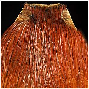 Скальп петуха STRIKE Cock Neck - Brown [Коричневый]