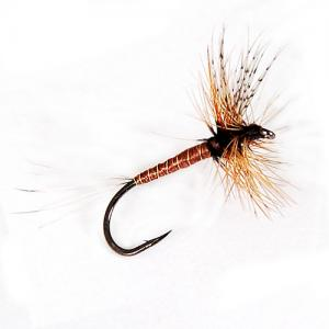 Brown Mayfly