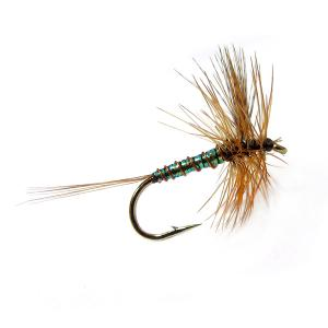 Crystal Mayfly