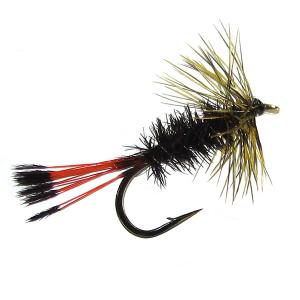 Peacock Dry Fly